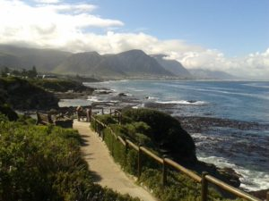 Hermanus Whale Watching - Cliff Paths